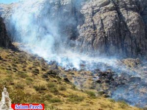 آتش سوزی مراتع پاوه
