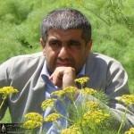محمد غریب معاذی نژاد