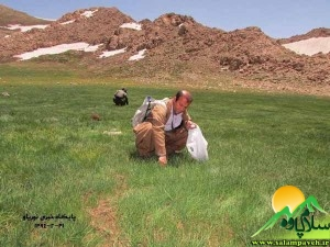 محمد رشید امینی  و مظفر