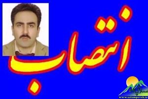 فریق محمودی