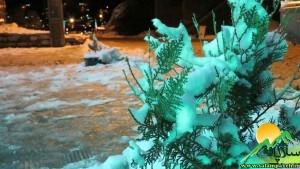 برف24