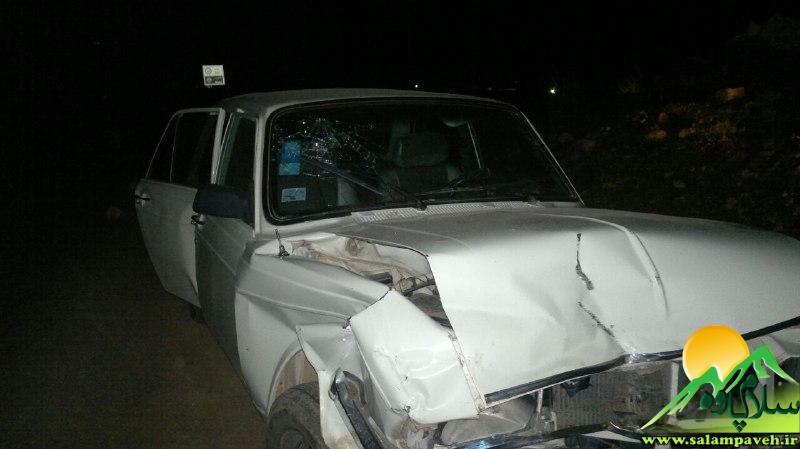 تصادف درسه راهی روستای میگوره بخش باینگان 2 مصدوم برجای گذاشت/ عکس