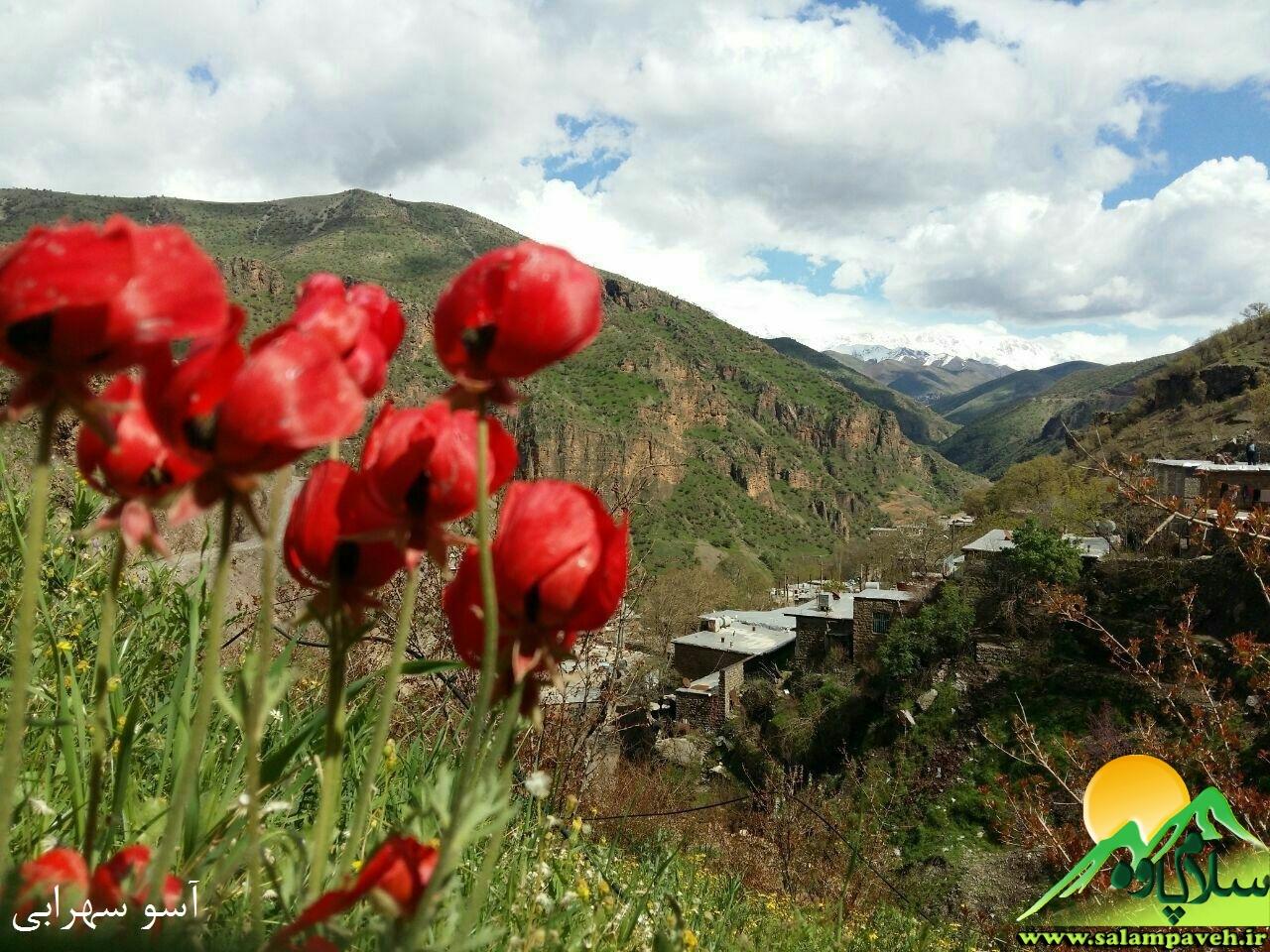 روستای دشه (4)