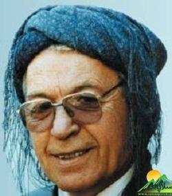 محمد ماملی (2)