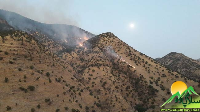 آتش سوزی بله بزان (6)