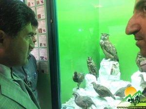 بازدید شهاب نادری3