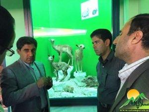 بازدید شهاب نادری7