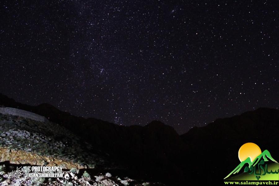 dalani-night (10)