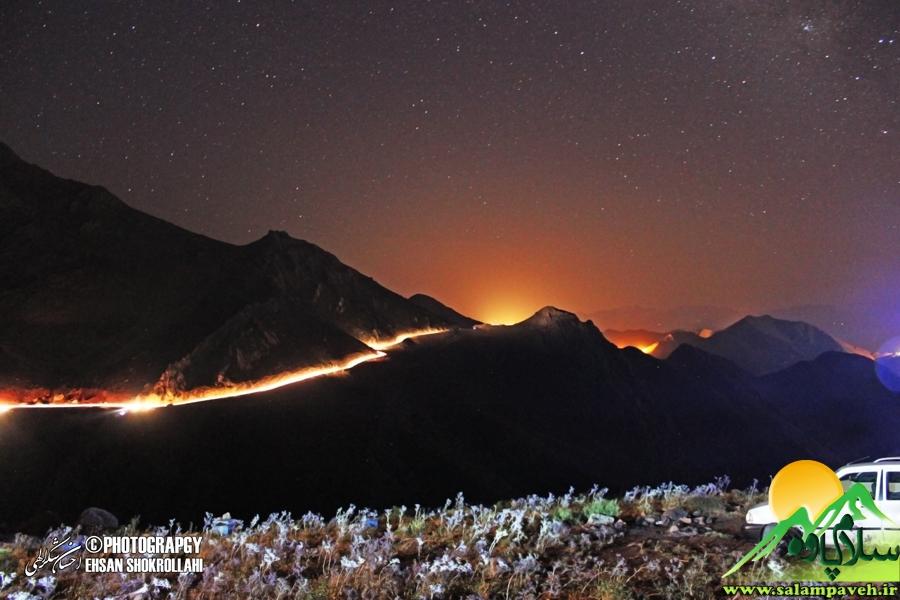 dalani-night (5)