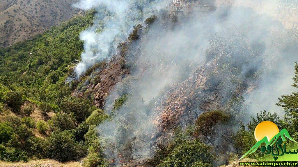آتش سوزی در نوسود