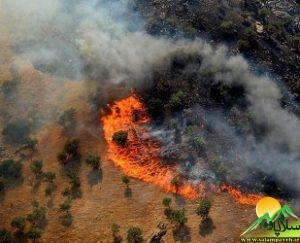 آتش سوزی روستای دشه