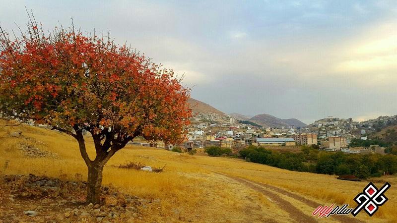 طبیعت زیبای شهر پاوه ، عکس: شهاب قادری