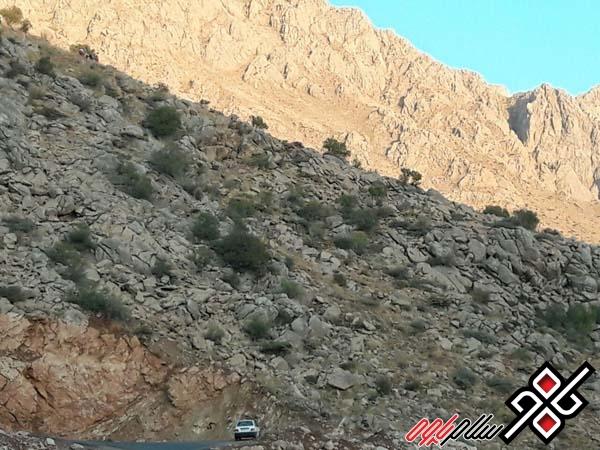 سقوط از کوهستان