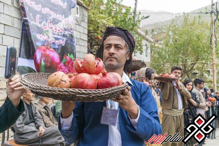 آئیئن انار روستای دودان