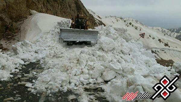 عملیات برف روبی و بازگشایی گردنه ته ته آغاز شد/ عکس